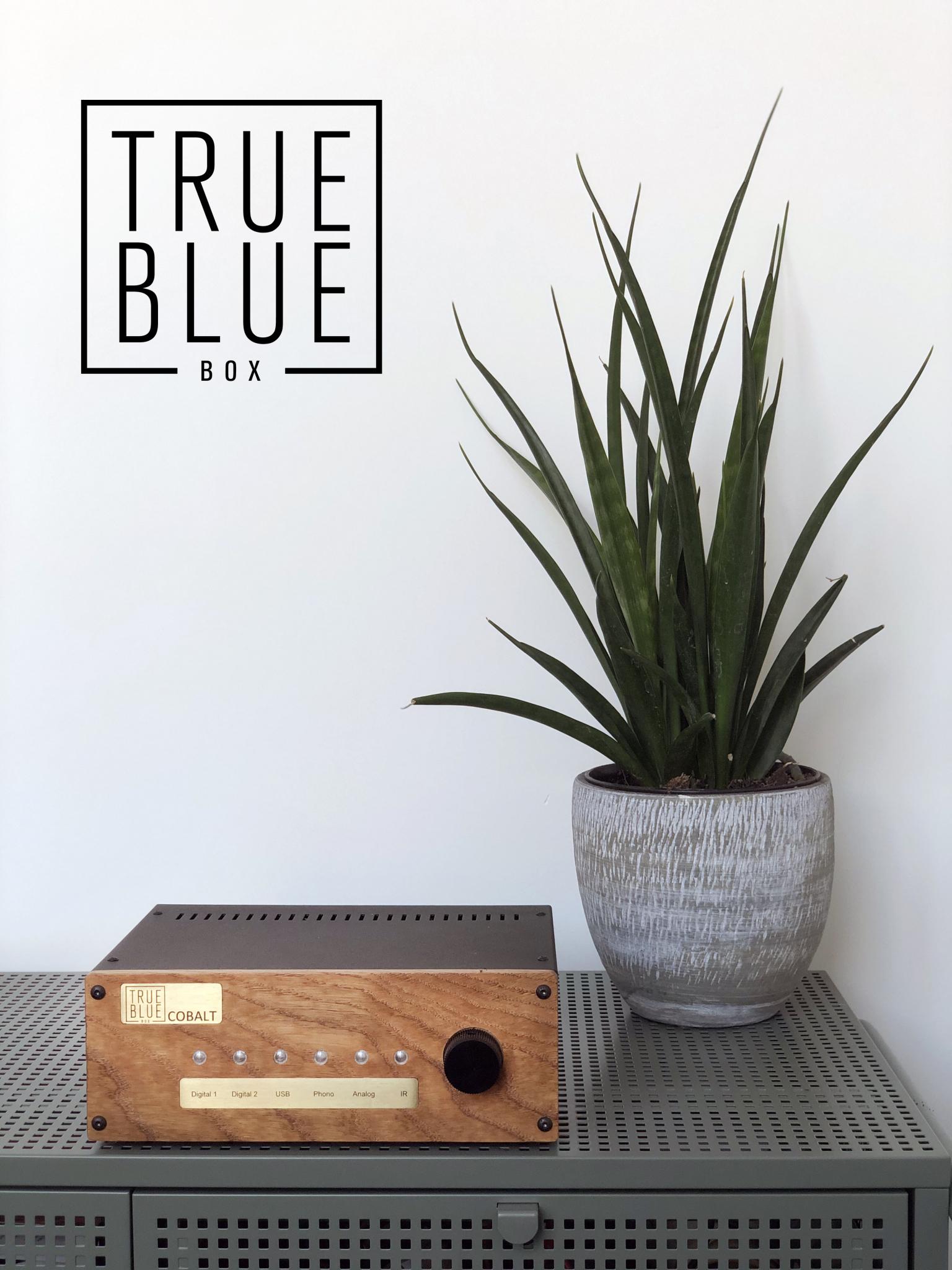 True Blue Box COBALT DA 21