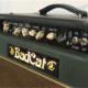 BadCat 1 blogfoto
